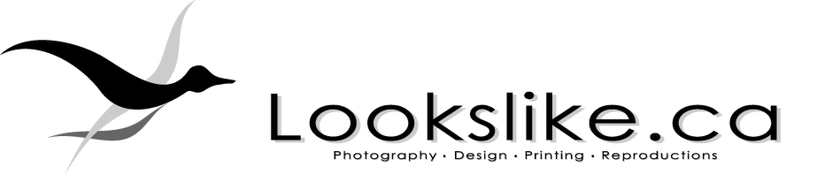 Lookslike.ca - Photography, Design, Printing and Reproductions